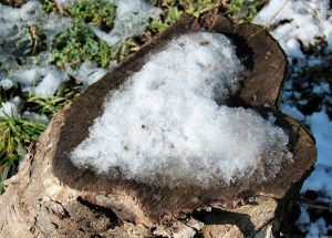 Snow-heart-507312be542b9_hires2